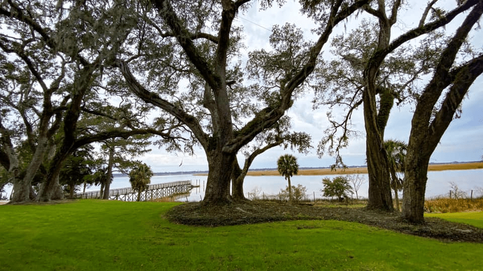 Winyah Bay from the Hobcaw House at Hobcaw Barony