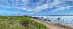 Oahu-North-Shore-Beach