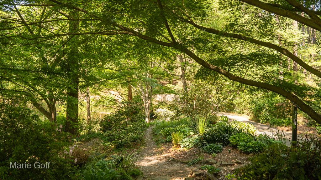 Natural Heritage Trail