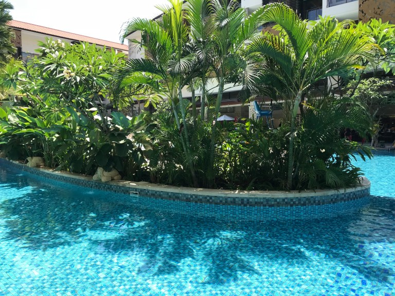 Celebrity Suite pool room