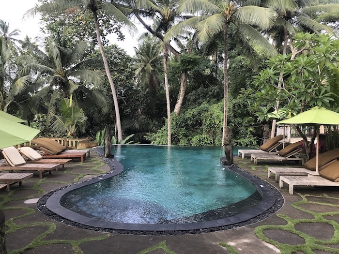 Infinity Pool with Jungle view at the Atta Mesari hotel in Ubud