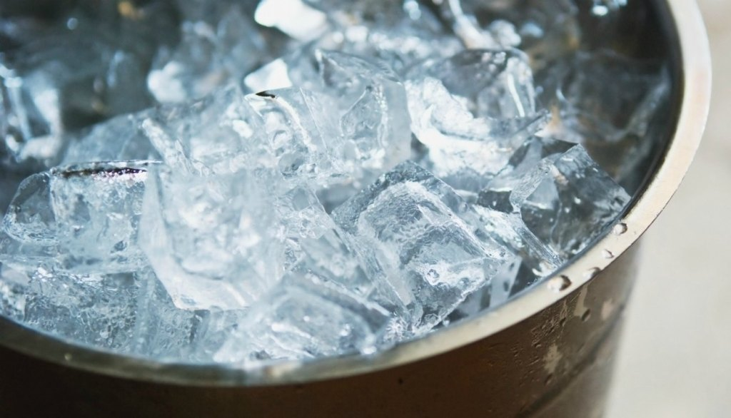 cruise secret ice bucket