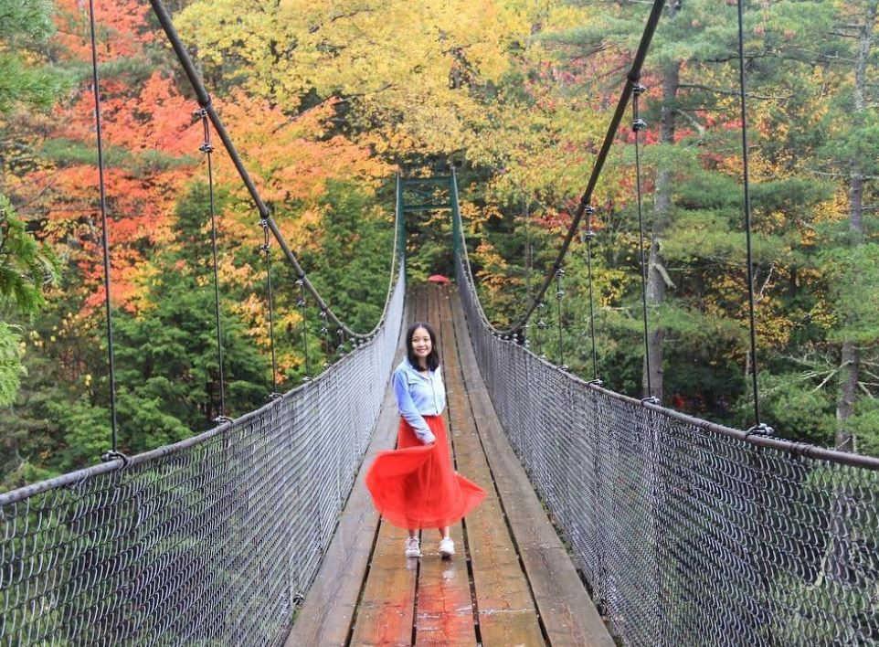 Quebec city nature bridge