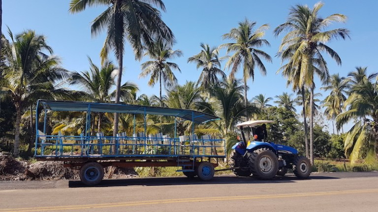 Mexican limousine in Mazatlan mexico tour