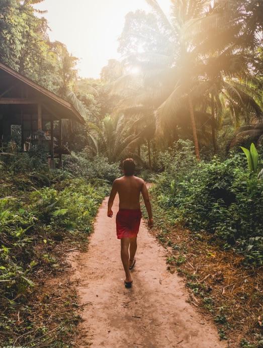 cebu jungle