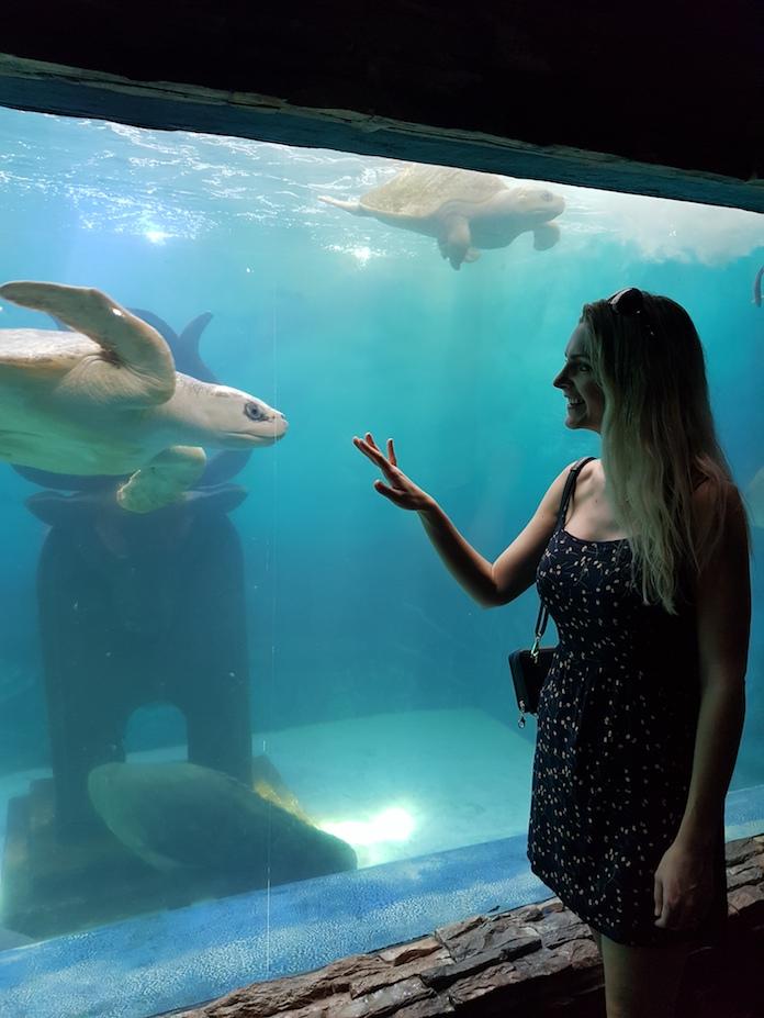 Kashlee at the aquarium in mazatlan