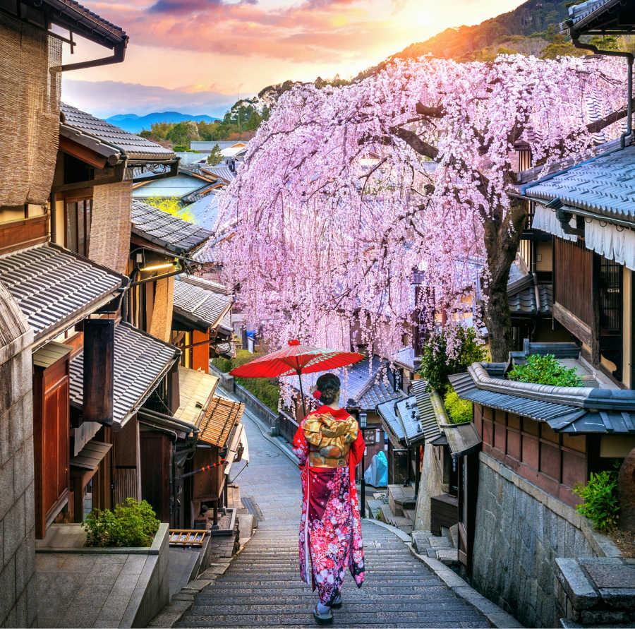 geisha walking in japanese street