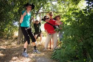 Provence Tour walking reviews