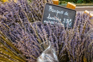 OTBP-Provence-May-Tour-20