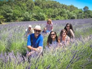OTBP-Provence-summer-tours-49