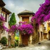 OTBP Provence Tours