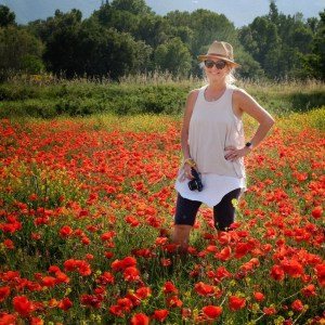 poppies-christy