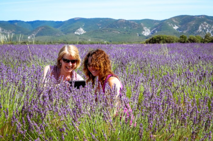 2018 2019 Provence Lavender Tour Dates!