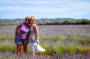 J49-lavender-vicky-carol