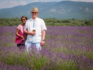 gigi-godehard-lavender