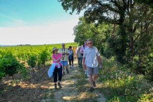2018-Provence-June-walking-2