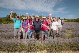 Provence Walking Tour Information
