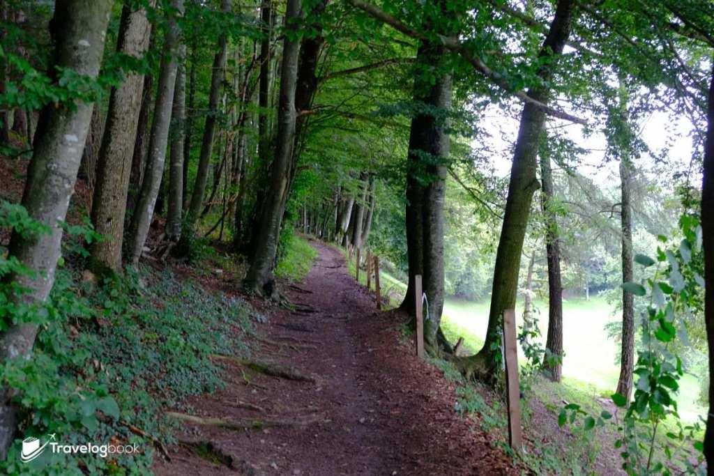 春天時,海迪就是沿着這條路前往山上的草地,一邊蹦蹦跳跳,一邊探索着大自然的天地。