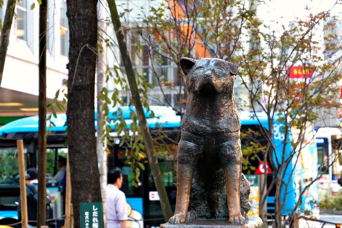 Hachiko-hondstandbeeld in Tokyo