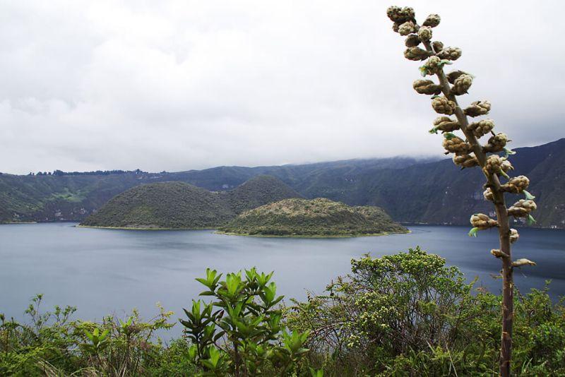 Kratersee im Naturreservat bei Otavalo in Ecuador
