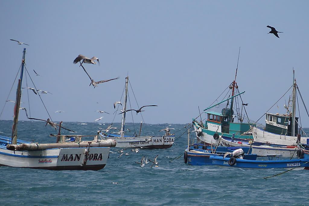Hafen von Mancora
