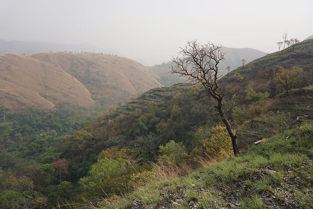 Trekking auf dem Wli-Falls-Track in Ghana
