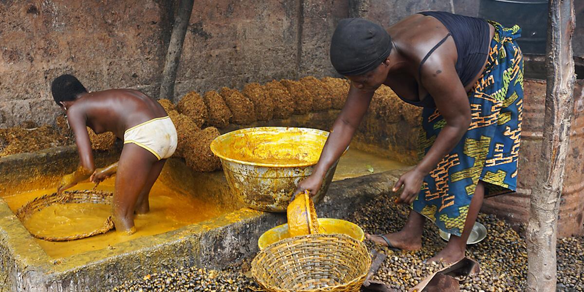 Raffenerie zur Herstellung von Palmöl in Benin