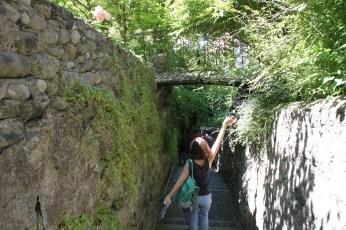 Viel Grün gibt es auch in der Bregenzer Altstadt