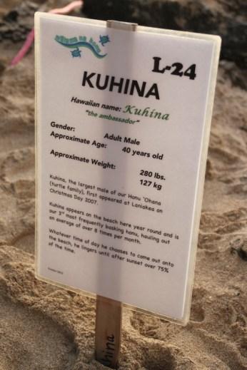 Kuhina Oahu Laniakea Beach