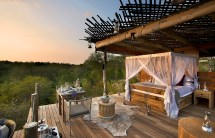 Treehouse Night Lion Sands Private Game Reserve