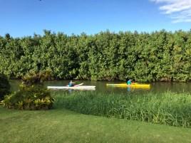 Kayaks on the Hanalei