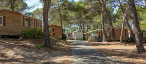 ACSI en Camping.info gaan samenwerken