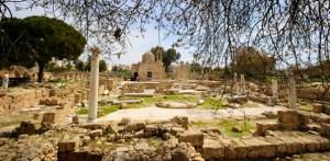 Veel beschikbaarheid individuele studiereis Cyprus