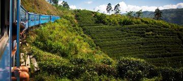 Reisadvies Sri Lanka naar oranje: alleen noodzakelijke reizen