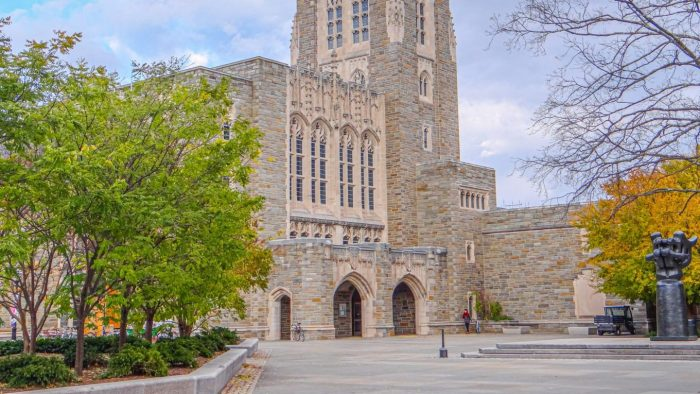 The Library of Princeton University – A Paradise!