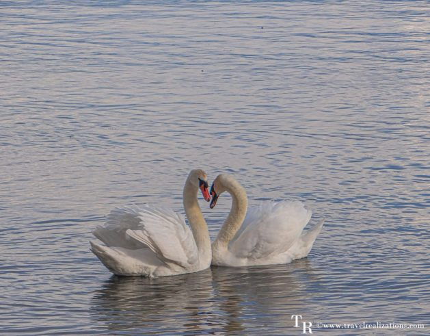 A journey with Jane Austen along the shores of Lake Geneva, Switzerland, Travel Realizations