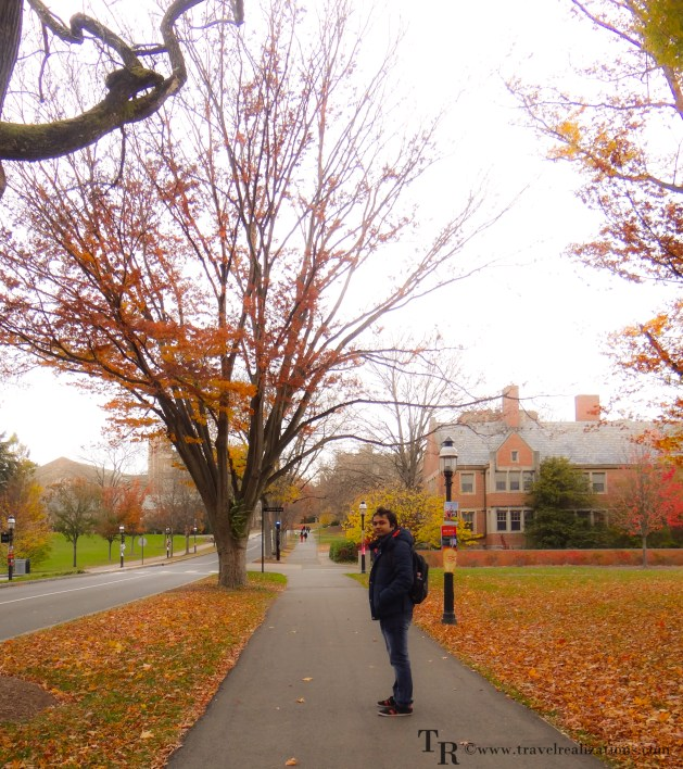 a fall foliage in princeton university campus travel