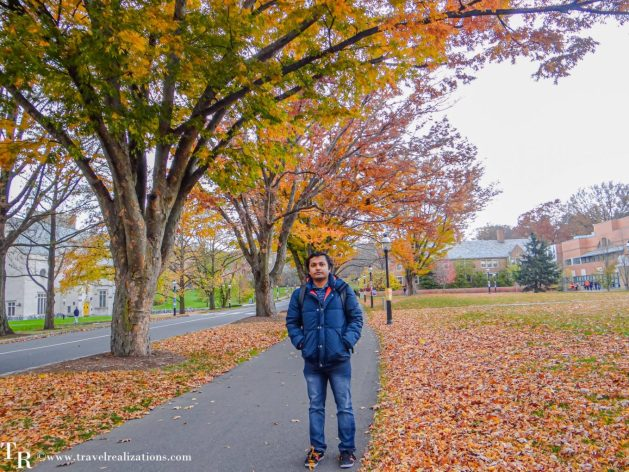 Fall Foliage in Princeton University Campus, Travel Realizations