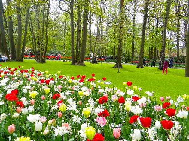 Travel Realizations, Keukenhof, spring garden, The Netherlands