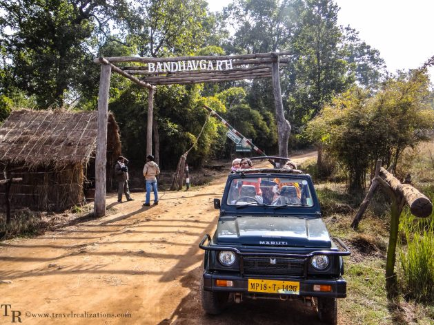 Travel Realizations, An enchanting forest safari, Bandhavgarh national park, Madhya Pradesh