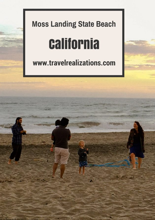 One afternoon in a weekend, we drove nearly an hour to reach the Moss Landing State Beach, California and spent a perfect family evening. #beach #sea #california #traveltips #travelblog
