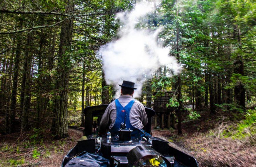 Beautiful steam train rides near San Francisco!