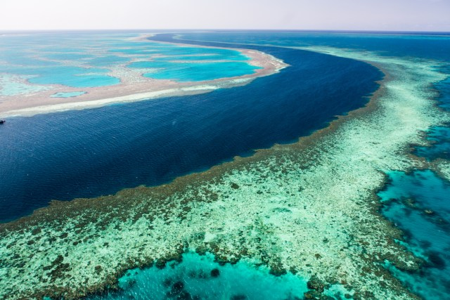 This is the great Barrier Reef.