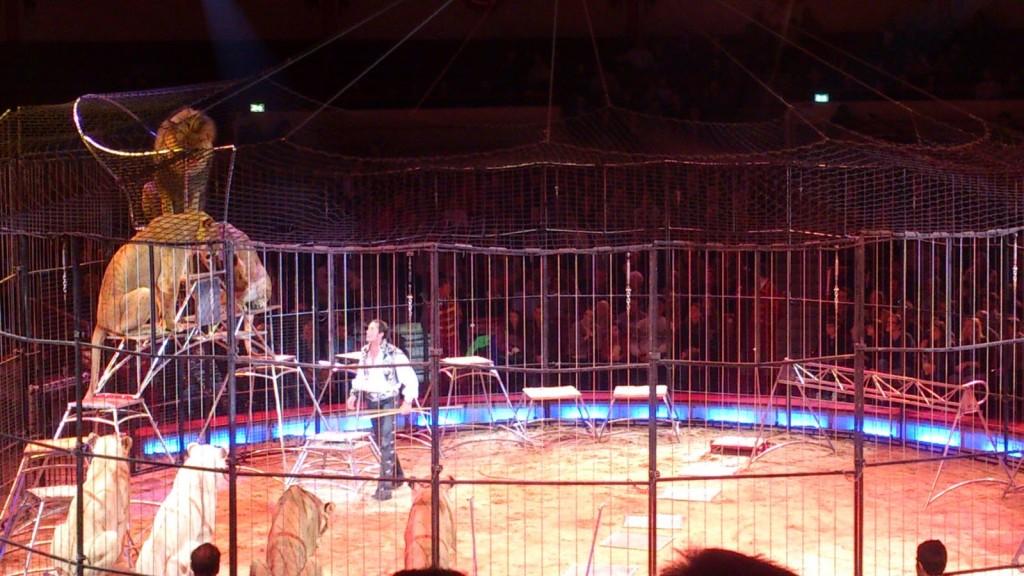 Circus Krone Frankfurt