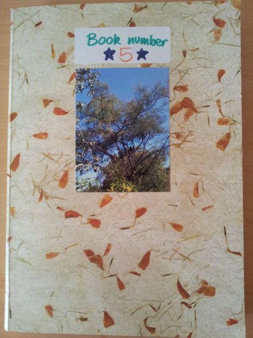 India scrapbook book 5 travels books sometimes i have to force myself to do it and sometimes like today i spend two hours on it and enjoy every minute solutioingenieria
