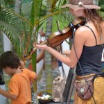 Fiddle player at Sayulita Market