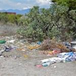 Litter, San Miguel de Allende