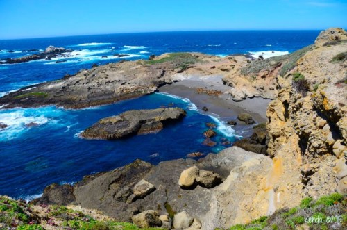 Coastline Point Lobos State Natural Reserve in Carmel