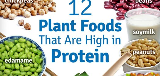 """21 Days for World Hunger – Days 5-6: """"Where Does She Get Her Protein??"""""""