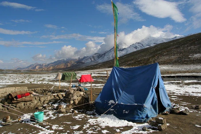 nimaling camp markha valley trek on a budget